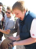 Point Lobos Science Camp 2009
